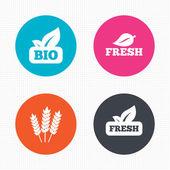 Natural fresh Bio food icons. — Stock Vector
