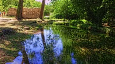Green Krka River — Stock Video