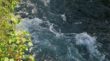 Krka river flow — Stock Video