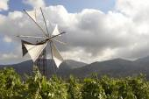 Traditional windmills in Lasithi plateau. Crete. Greece — Foto Stock