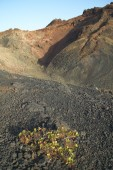 Volcanic landscape in La Palma. Canary Islands. Spain — Stock Photo