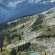 Whistler landscape with mountains and lake. British Columbia. Ca — Stock Photo #61276589