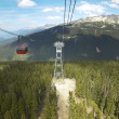 Chair lift and forest in Whistler. British Columbia. Canada — Stock Photo #61403367