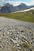Canadian landscape with glacier. Icefields parkway. Alberta. Can — Stock Photo