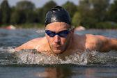 Carrera de natación de mariposa o delfín nadador — Foto de Stock