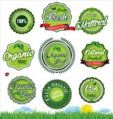 Natural eco green label collection — Stock Vector