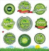 Natural eco green label collection — Vector de stock