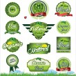 Natural eco green label collection — Stock Vector #52551367
