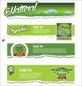 Ecology, organic, nature green banner collection — Stock Vector