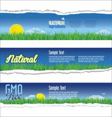 Ecology natural background — Stock Vector