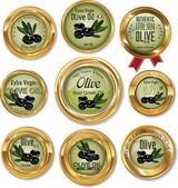 Olive golden labels set — Stock Vector