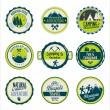 Set of outdoor adventure blue and green retro labels — Stock Vector #53536781