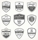 Premium quality retro vintage badges — Stock Vector