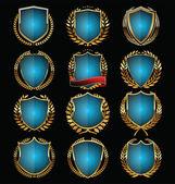 Golden shield design — Stock Vector