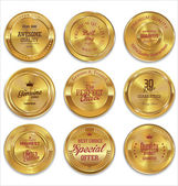 Golden metal badges colection — Stock vektor