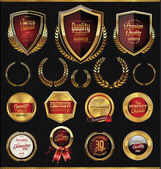Golden shields, laurels and medals — Stock Vector