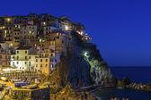 Manarola in Cinque Terre regio in Italië — Stockfoto