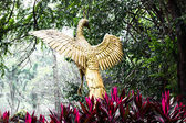 Peacock gold Statue — Zdjęcie stockowe