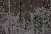 Background Wall wood — Stock Photo