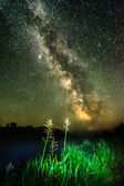 Nigt on foggy river- green light cane with stars, deep sky and m — Stock Photo