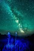 Noc na mlhavé řeky modré světlo hůl s hvězdami, hlubokého a mi — Stock fotografie