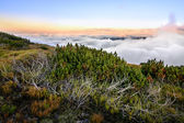 Above the clouds mountain panorama — Zdjęcie stockowe
