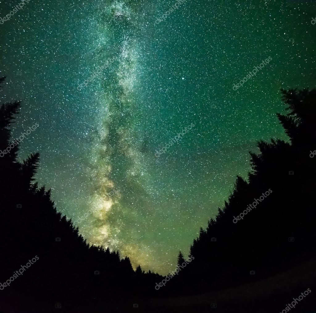 Фотообои Ночь на горах лес - со звездами, глубокое небо и Млечный путь