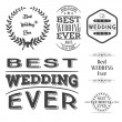 Set of best wedding ever labels — Stock Vector #67242219