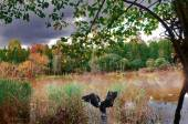 Autumn in a quiet backwater — Stock Photo