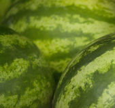 Watermelons fruit in supermarket grocers — Stock Photo