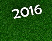 2016 sign on grass — Stock Photo