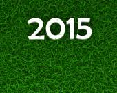 2015 sign on grass — Stock Photo