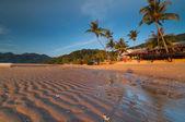 Beach at tioman island — Stock Photo