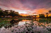Cyberjaya lake during sunset — ストック写真
