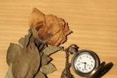 Clocks with dead roses — Stockfoto