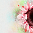 Pink watercolor sunflower — Stock Photo #62283623