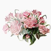Roze roos boeket — Stockvector