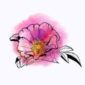 Zomer roze bloem — Stockvector