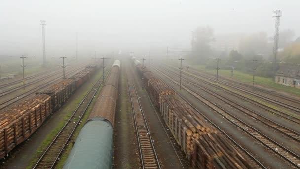 Freight train station - Cargo transportation — Vídeo de stock