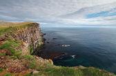 Cliff in Iceland - latrabjarg — Stock Photo