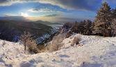 Forest berglandschap op winter — Stockfoto