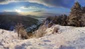 Wald-Berglandschaft im winter — Stockfoto