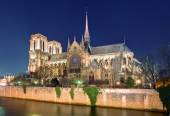 Island Cite with cathedral Notre Dame de Paris  — Stock Photo