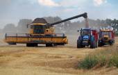 Field and harvester — Stock Photo