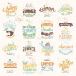 Retro elements for Summer calligraphic designs . Vintage ornaments . tropical paradise, sea, sunshine, weekend tour, beach vacation, bon voyage, adventure labels . vector set — Stock Photo #56185529