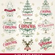 Hand Drawn Christmas And New Year Decoration Set Of Calligraphic And Typographic Design With Labels, Symbols And Icons Elements — Stock Photo #59358119
