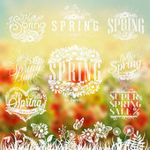 Beautiful Typographical Spring Set With Nature Elements, Grass, Flowers And Butterfly — Stock Photo