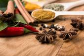 Spices. Cinnamon, anise, hot chili peppers witn herbs — Stock Photo