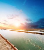 Acqua pulizia impianto all'aperto — Foto Stock