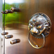 Chinese classical architecture knocker — Stock Photo #57787667
